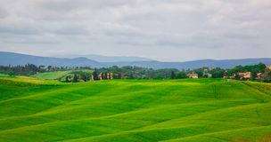 Beautiful summer landscape with wavy hills Stock Image