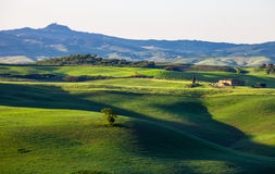 Beautiful summer landscape with wavy hills and a lodge, Tuscany, Stock Photography