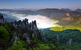 Beautiful Summer Landscape With Inversion Stock Image