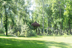 Beautiful summer lawn. A beautiful lawn with cut grass and a pergola in the background among the birches Stock Photo