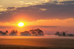 Beautiful summer morning landscape. Misty dawn. Stock Photos