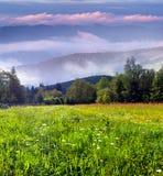 Beautiful summer morning in mountains Stock Photos