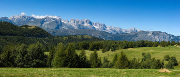 Beautiful summer mountain landscape Stock Images