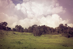 Beautiful summer mountain landscape. Retro filtered. Cross proce Royalty Free Stock Images