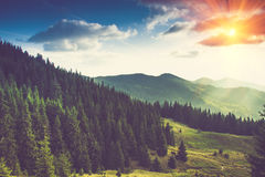 Beautiful summer mountain landscape at sunshine. Tourist tents near forest Stock Photography