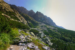 A beautiful summer mountain landscape in Tatry. A beautiful mountain landscape in Tatry, Slovakia stock photography