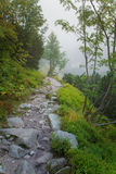 A beautiful summer mountain landscape in Tatry. A beautiful mountain landscape in Tatry, Slovakia stock photo