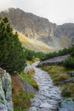 A beautiful summer mountain landscape in Tatry. A beautiful mountain landscape in Tatry, Slovakia royalty free stock photos