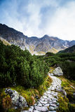 A beautiful summer mountain landscape in Tatry. A beautiful mountain landscape in Tatry, Slovakia stock photos