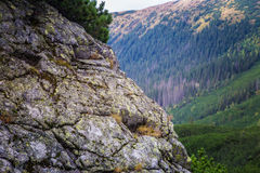A beautiful summer mountain landscape in Tatry. A beautiful mountain landscape in Tatry, Slovakia stock images