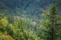 A beautiful summer mountain landscape in Tatry. A beautiful mountain landscape in Tatry, Slovakia royalty free stock photo