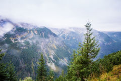 A beautiful summer mountain landscape in Tatry. A beautiful mountain landscape in Tatry, Slovakia stock image