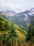 A beautiful summer mountain landscape in Tatry. A beautiful mountain landscape in Tatry, Slovakia royalty free stock images