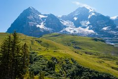 Beautiful summer mountain landscape with views of Eiger peak and menh peak. Bernese Oberland, Switzerland. Beautiful summer mountain landscape with views of stock photos
