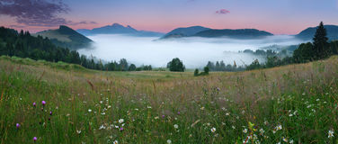 Beautiful summer mountains landscape with mist. Stock Image