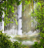 Beautiful summer mystical background photo montage with a birch Stock Photography