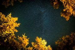 Summer night sky with stars and Milky way. Beautiful summer night sky. Milky way and falling stars. Vertical image concept Stock Images