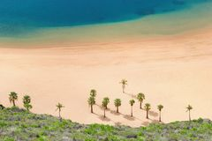Beautiful sandy beach with palm trees - aerial view royalty free stock photography