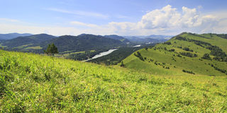Beautiful summer panorama of the Altai mountains Royalty Free Stock Image