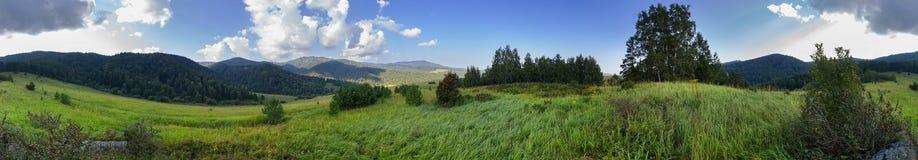 Beautiful summer panorama of lush vegetation in Altai Mountains Royalty Free Stock Photos