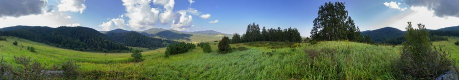 Beautiful summer panorama of lush vegetation in Altai Mountains Royalty Free Stock Photos