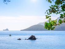 Beautiful summer panoramic seascape. View of the the sea bay with crystal clear azure water. The branches of the old olive tree in. The foreground stock photo