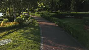 Beautiful summer park, aerial view. Summer city park, sunny day. Good place for rest stock video