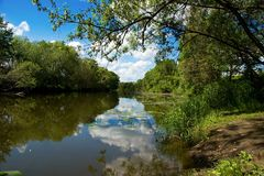 Beautiful summer park, river, reflection Stock Photography