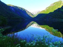 Lake, plants and beautiful mountains, Norway stock photography