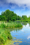 Beautiful summer river landscape Royalty Free Stock Photo