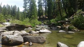 Beautiful summer river. A lovely pool at the river royalty free stock photos