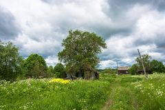 In the Russian village in the summer. Stock Photography