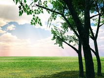 Beautiful summer scenery Royalty Free Stock Photo