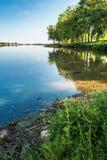Beautiful summer scenery near the lake royalty free stock photo