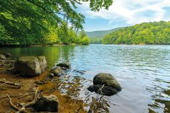 Beautiful summer scenery near the mountain lake. Beech forest and rocks on the shore. sunny weather and crystal clear water royalty free stock images