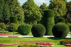 Beautiful summer Schonbrunn park Stock Photography