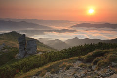 Beautiful summer sunrise in the Carpathian mountains Stock Photo