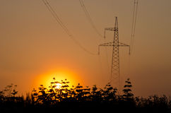 Beautiful summer  sunrise and High voltage post Royalty Free Stock Photo