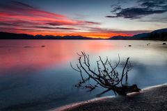 Beautiful summer sunset in the lake Royalty Free Stock Photography