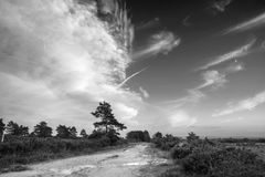 Beautiful Summer sunset landscape image of Ashdown Forest in Eng. Lish countryside black and white image Royalty Free Stock Photos