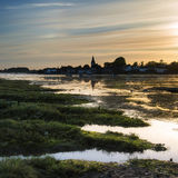 Beautiful Summer sunset landscape over low tide harbor with moor Stock Images