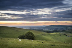 Beautiful Summer sunset landscape Steyning Bowl on South Downs Royalty Free Stock Photos