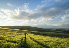 Beautiful Summer sunset landscape Steyning Bowl on South Downs Stock Image