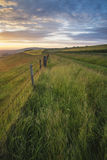 Beautiful Summer sunset landscape Steyning Bowl on South Downs Stock Photography