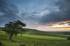 Beautiful Summer sunset landscape Steyning Bowl on South Downs Royalty Free Stock Images