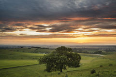 Beautiful Summer sunset landscape Steyning Bowl on South Downs Royalty Free Stock Photo