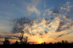 Beautiful summer sunset Stock Photography