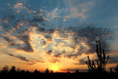 Beautiful summer sunset Royalty Free Stock Photography