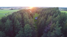 Beautiful summer sunset. Road / alley. Green fields and forest. Aerial footage. stock video