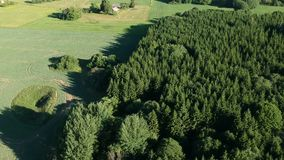 Beautiful summer time land with fields and forest, aerial stock video